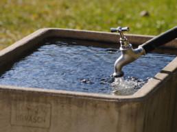 Brunnen im Plattenbödeli