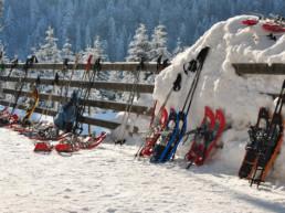 Schneeschuhlaufen im Berggasthaus Plattenbödeli