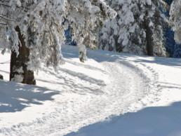 Spuren-in-tief-verschneiter-Landschaft
